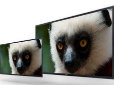Sony pregateste noua generatie de prototipuri 4K: monitoare si camere foto