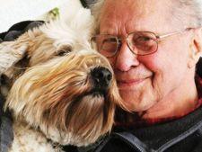 Cum influenteaza animalele de companie sanatatea oamenilor
