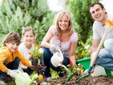 Amenajarea gradinii: cum sa o faci functionala pentru intreaga familie
