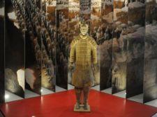 Expozitii inedite in Bucuresti