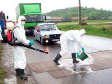 Cum se poate opri propagarea virusului gripei aviare H5N1