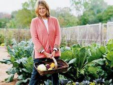 Martha Stewart: Cele mai importante sfaturi pentru gradina de legume