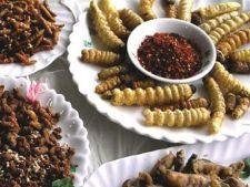 Organizatia pentru Alimentatie si Agricultura recomanda consumul de insecte