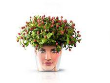 Ghivece imprimate cu portrete de familie: cum sa cresti plantele in mod amuzant