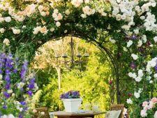 Cele mai frumoase gradini cu trandafiri