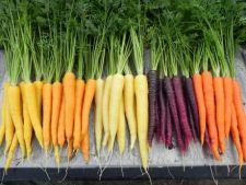 4 lucruri interesante despre morcovi