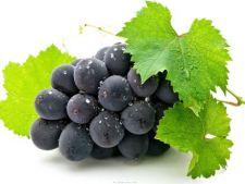 5 fructe delicioase care se pot dezvolta in ghivece