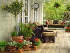 De ce este indicat sa amenajezi o terasa in fata casei?