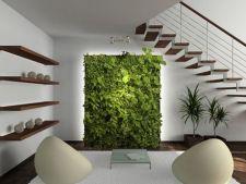 Moduri practice si inovatoare de a folosi peretii liberi din casa