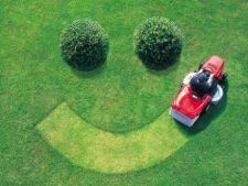 Ingrijirea gazonului: 4 moduri istete de a face economii