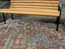 Amenzi usturatoare pentru cei care sparg seminte in parc