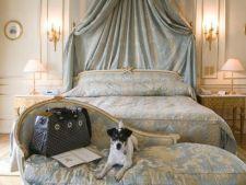 Cele mai prietenoase hoteluri pentru tine si cainele tau