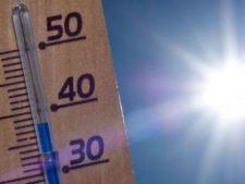 Temperaturi insuportabile de 40  de grade Celsius