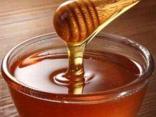 A fost descoperit un tip de miere cu proprietati curative uimitoare
