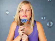 Floroscopul: zodia ta si floarea care ti se potriveste