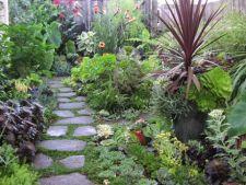 6 solutii pentru a avea o gradina eco toamna