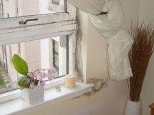 Cum iti protejezi casa de umezeala