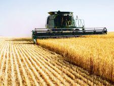 Guvernul propune o noua lege: cumperi pamant doar daca ai studii agricole
