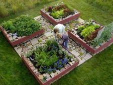 Legume sanatoase intr-o gradina spectaculoasa: 7 proiecte ingenioase pentru gradini