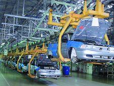 Un nou sector economic renaste