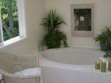 Cele mai bune plante pentru improspatarea aerului din baie