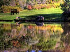 Cele mai frumoase gradini: Gradina Botanica Nationala Kirstenbosch din Cape Town