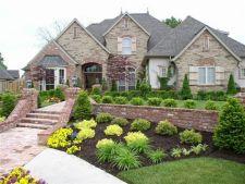 5 tipuri de arbusti, ideali pentru amenajarea gradinii