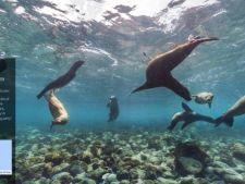 Exploreaza Insulele Galapagos din confortul casei tale cu ajutorul Google Street View