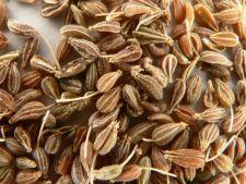 Anasonul, condimentul ce da o aroma distincta mancarurilor mediteraneene