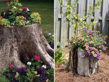 Cum transformi bustenii din gradina in decoratiuni spectaculoase