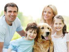 Cum sa-ti convingi familia sa adopte un caine