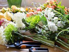 Secretele florarilor: cum sa faci ca florile cumparate sa reziste mai mult