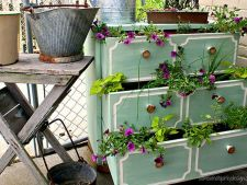 5 obiecte banale care pot fi un decor surprinzator pentru plantele tale