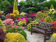 Gradina Four Seasons din Anglia, un loc surprinzator si maiestuos