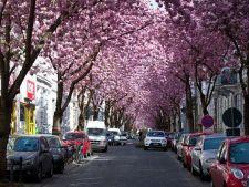 5 strazi laturalnice superbe din Europa