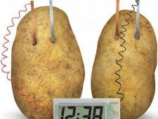 O noua metoda de iluminare: cartoful