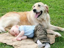 Cainii de companie ii protejeaza pe copii de alergii