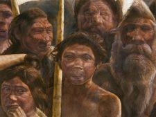 Cel mai vechi ADN uman reconstruit are 400.000 de ani