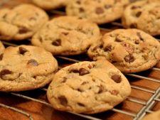 Biscuiti cu fulgi de ciocolata