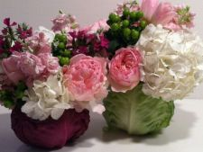 Cum sa faci un aranjament surprinzator din flori si o varza rosie