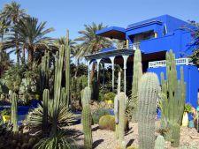 Gradina Majorelle din Maroc, un loc surprinzator, ce impresioneaza prin jocul de culori