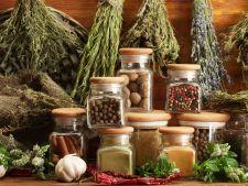 4 sfaturi pentru folosirea ierburilor aromate uscate la gatit. Invata sa le utilizezi corect in manc