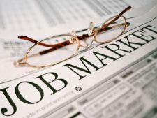 Job-urile fara studii superioare unde salariul ajunge la 1.000 de euro net