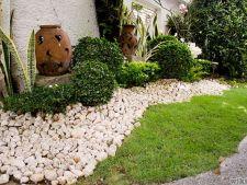 Rocile, indispensabile pentru frumusetea gradinii. Iata cateva maniere uimitoare de a le folosi!