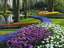 Top 5 cele mai frumoase gradini din Europa. Tu le-ai vazut?