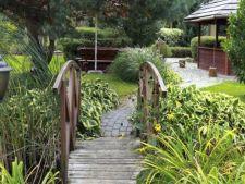 Idei surprinzatoare de a decora gradina in stil thailandez