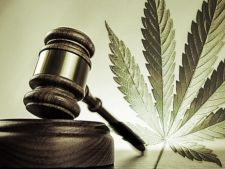 A aparut prima reclama oficiala la marijuana