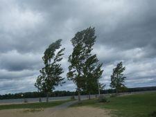 Dupa ploi, vijelii: cod galben de vant in 6 judete