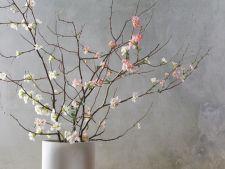 Aranjamente florale spectaculoase de primavara