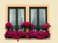 Scoate din anonimat balcoanele mici! Idei de decor simple si ieftine